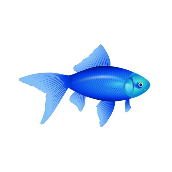 Создание сайта по чистке аквариумов