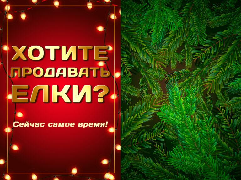 Хотите продавать елки на маркетплейсах? Сейчас самое время!